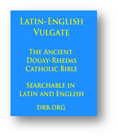 The Ancient Douay Rheims Catholic Bible