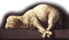 The Sacrificial  Lamb of God — Jesus Christ